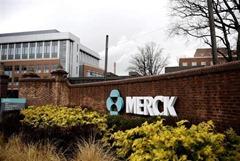Empresa Merck Retrasa Lanzamiento de Remedio para la Osteoporosis.